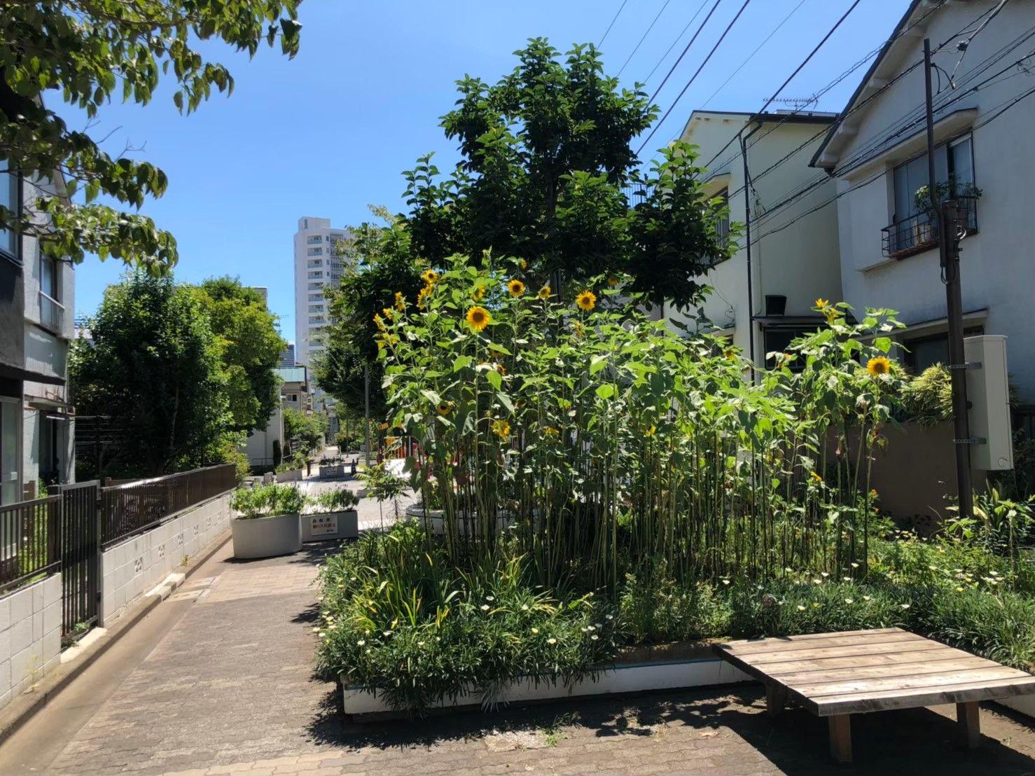 立会川児童遊園(その2)